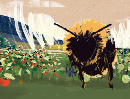 illustration of a bee flying in a field of flowers