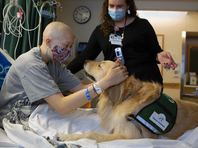 therapy dog with patient and nurse who are wearing protective masks.