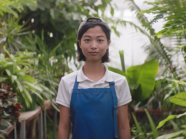 A student worker wearing an apron in a greenhouse.